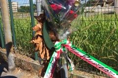 2018-07-06 Vigevano (Recordari) - Buon compleanno Sergio 02